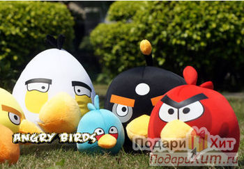 http://i.podarihit.ru/files/i/r/medium_image/product/products/4926/vse_ptichki_i_svinka_angry_birds_large.jpg